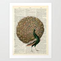 Vintage Peacock II Art Print