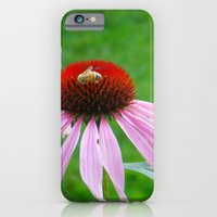 iPhone & iPod Case featuring Buzz by Amy K. Nichols