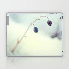 Silver Pane Laptop & iPad Skin