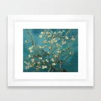 Van Gogh - Blossoming Al… Framed Art Print