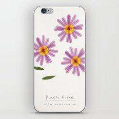 Purple Aster Modern Botanical iPhone & iPod Skin