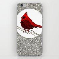 A Red Cardinal iPhone & iPod Skin