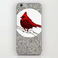 A Red Cardinal iPhone & iPod Skin