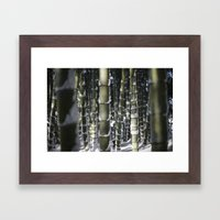 Kyoto Winter 2015 II (bamboo)  Framed Art Print