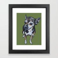Artie The Chihuahua Framed Art Print