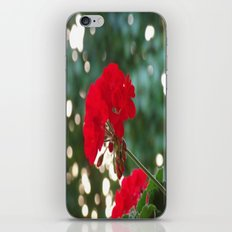 Red Flower iPhone & iPod Skin