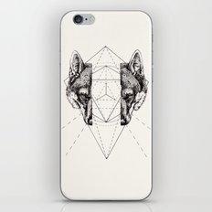 Geometry Within  iPhone & iPod Skin