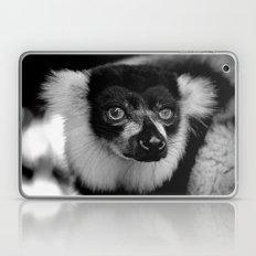 Curious Lemur Laptop & iPad Skin