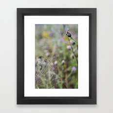 Architecture of a Spiderweb  Framed Art Print