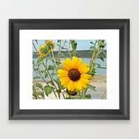 Grabbing Some Sun Framed Art Print