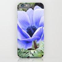 Purple Poppy Anemone I iPhone 6 Slim Case