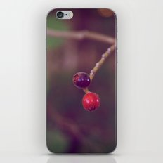 Vintage Nature iPhone & iPod Skin