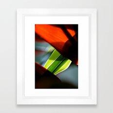 An Unlikely Pair Framed Art Print