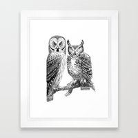 Bubo and Strix Framed Art Print