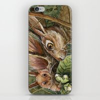 Bunny, Squirrel And Nuts… iPhone & iPod Skin