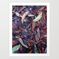 Rainforest No.3 Art Print