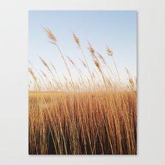 Refuge Sunset Canvas Print