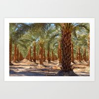 Palm Tree Forest Art Print