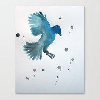 Bluejay Canvas Print