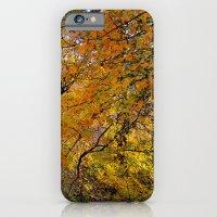 Colorful Path iPhone 6 Slim Case