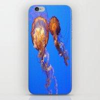 JellyFish. iPhone & iPod Skin