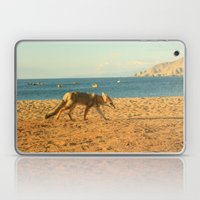 Fox on the beach Laptop & iPad Skin