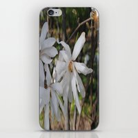 waving flowerheads iPhone & iPod Skin