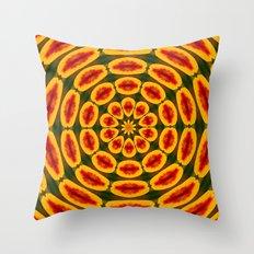 Farben  Throw Pillow