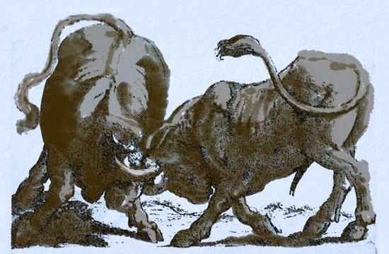 Bullfight Art Print