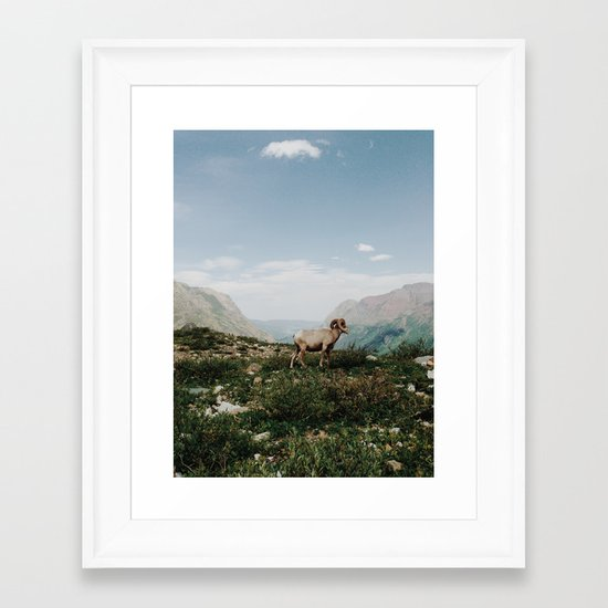 Bighorn Overlook Framed Art Print
