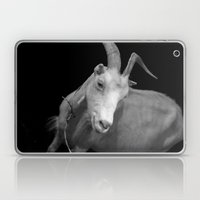 Black Goat Laptop & iPad Skin