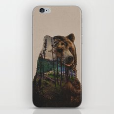 Bear Lake iPhone & iPod Skin