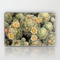 Pretty Prickly Laptop & iPad Skin