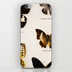 Forever Beautiful Butterfly iPhone & iPod Skin
