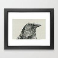 Framed Art Print featuring American Crow by Bonnie Johnson