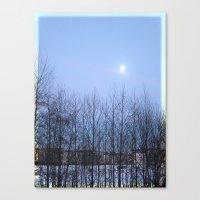 Winter Sky 2013 Canvas Print