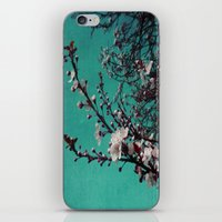 Cherry Blue iPhone & iPod Skin