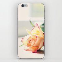 Rose by the Window iPhone & iPod Skin