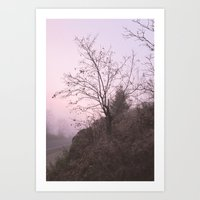 Misty Sunset Art Print