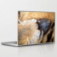 Laptop & iPad Skin featuring Sleeping Aardwolf by Serenity Photography