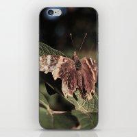 Crude iPhone & iPod Skin