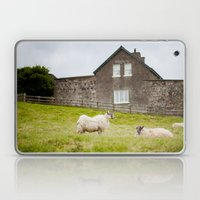 Sheep blown by the wind Laptop & iPad Skin