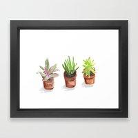 3 Potted Plants Framed Art Print