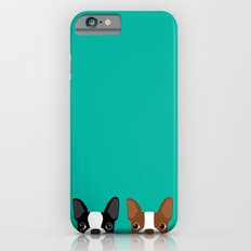Boston Terriers iPhone 6 Slim Case
