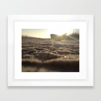 Myrtle Beach Framed Art Print
