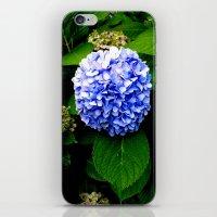 Blue Flower (Edited) iPhone & iPod Skin