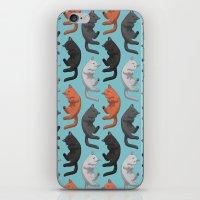 Sleeping Cats Pattern iPhone & iPod Skin