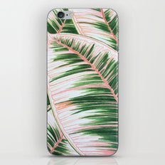 Leaves 1- Pink iPhone & iPod Skin