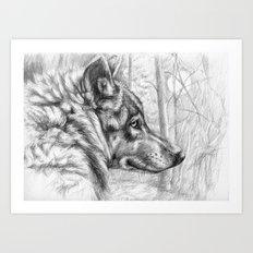 Wolf in woods G082 Art Print