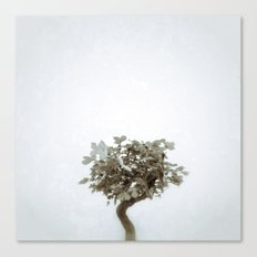 Tree #04 Canvas Print